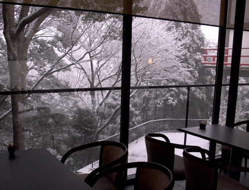 in_snow2.jpg