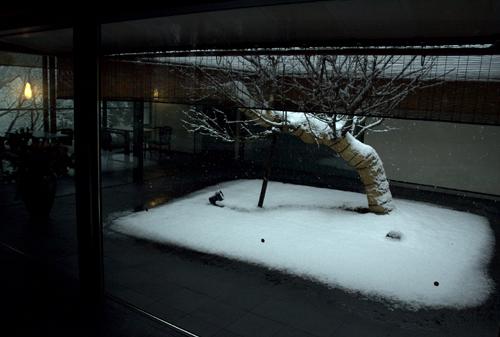 in_snow3.jpg