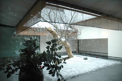 in_snow4.jpg